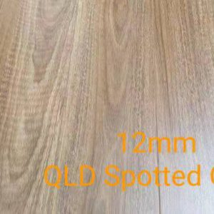 105 spotted gum